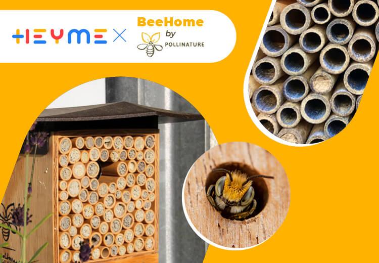 Des abeilles sur ton balcon, ça te tente ? - Heyme